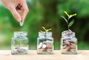 Grow your Savings 2